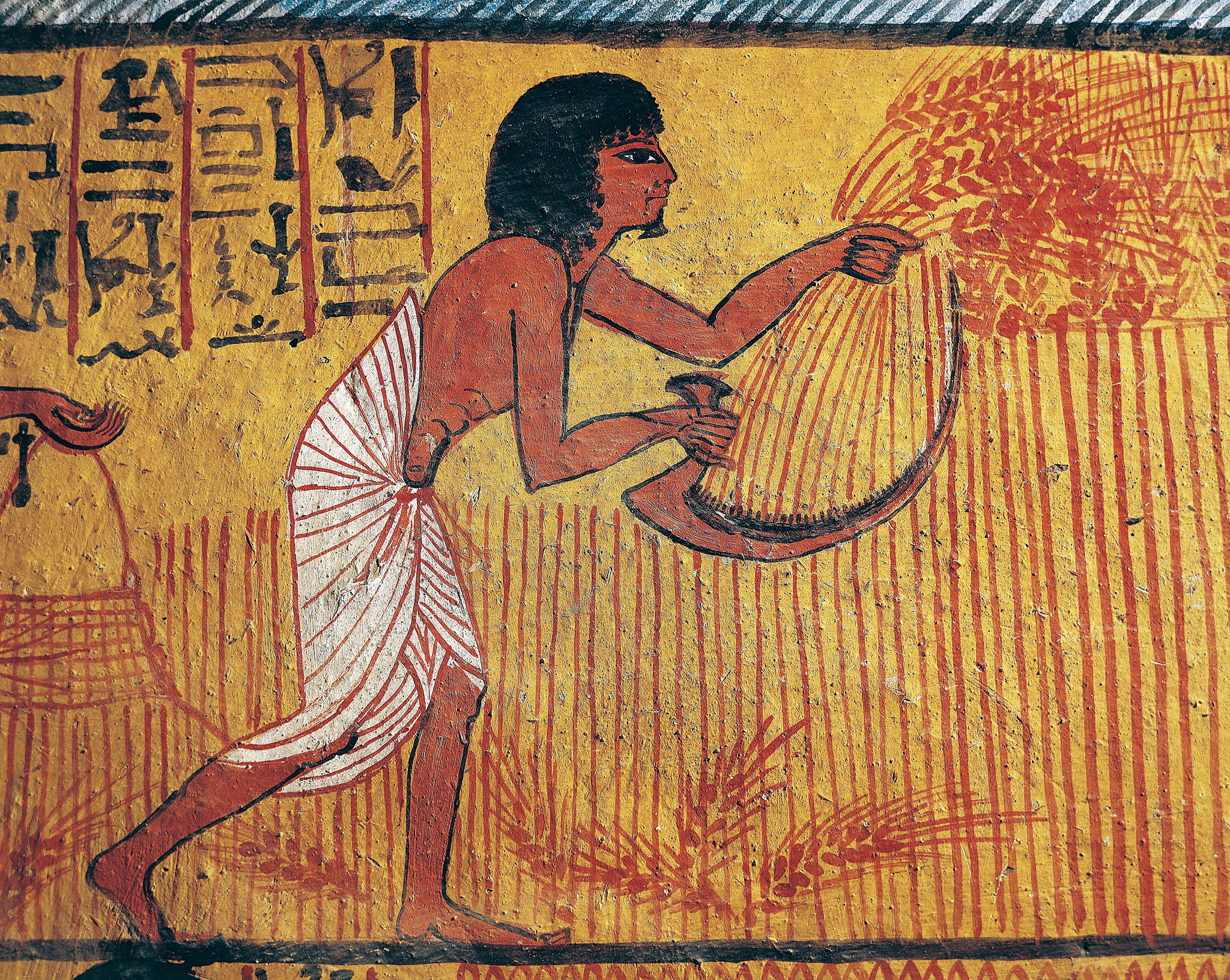 Image result for barley in ancient egypt